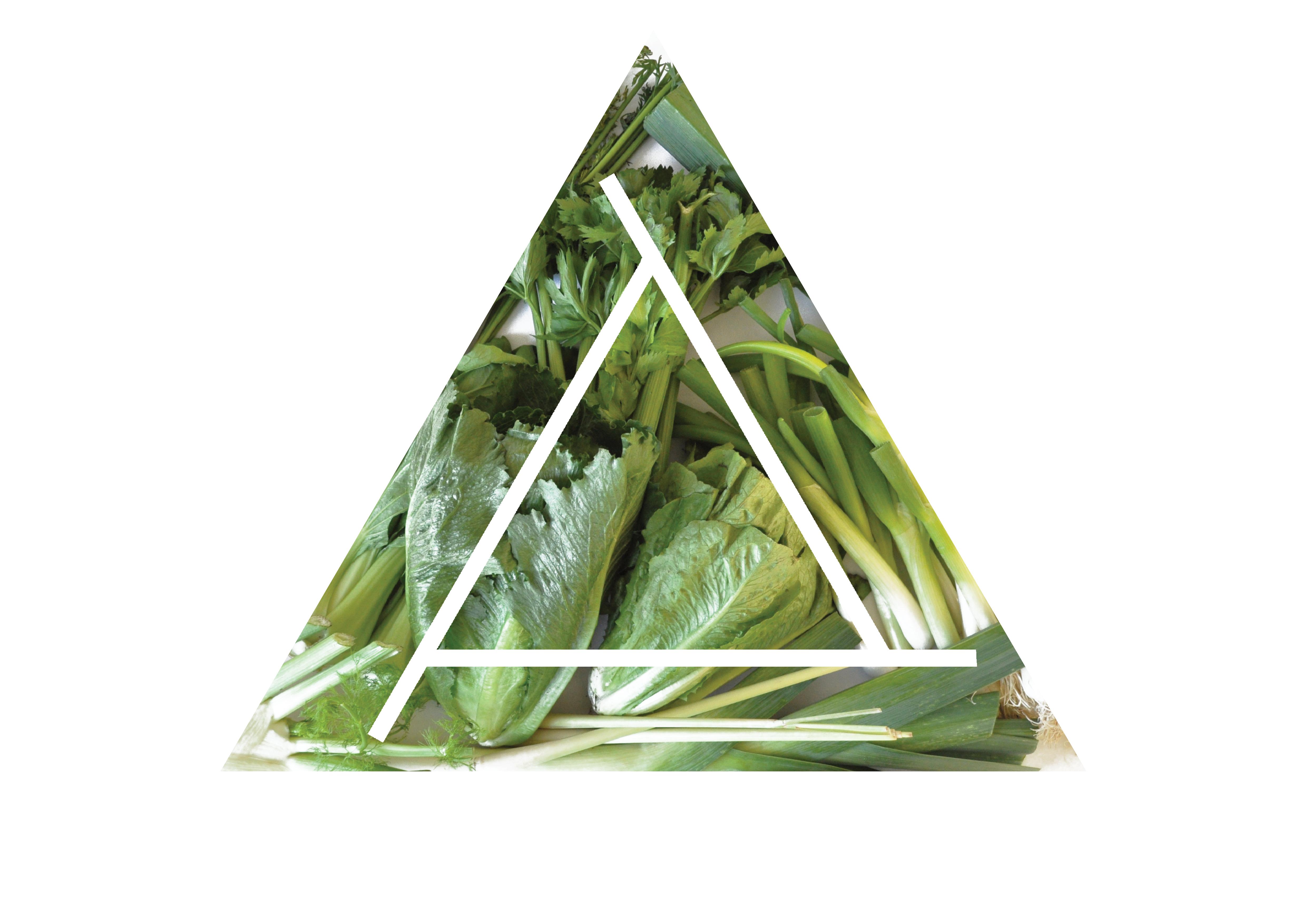 RegrowRegrow, ny startat svenskt företag. Miljömedveten produkt. Återväx dina grönsaker!